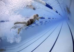 trofeo interazionale nuoto riccione
